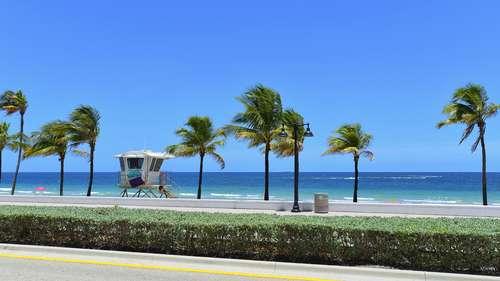 Palm Beach Air Charter Flights