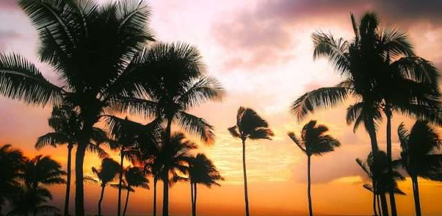 jet charters to hawaii