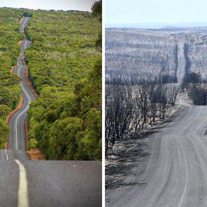 19 Images Before & After Australian Bushfires 2020